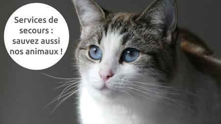 Demandez votre autocollant « Sauvez nos animaux » !