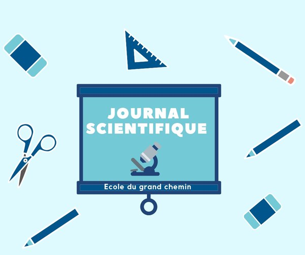 Copie de Copie de Copie de journal scientifique