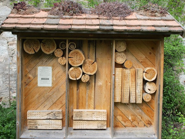 insect hotel 481368